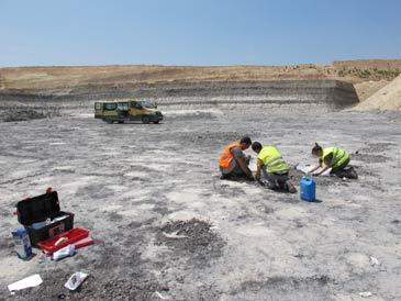 Vista general del yacimiento de icnitas de Oliete durante los trabajos de los paleontólogos