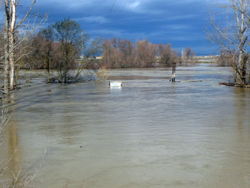 Imagen de la riada en 2013