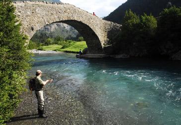 La mayoría de las faltas fueron por pescar sin permiso en el coto o mantener peces vivos