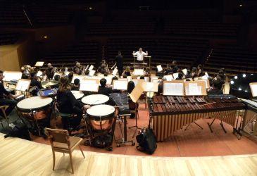 En el concierto habrá instrumentos de viento madera y metal, percusión y además violonchelos, contrabajos, arpa, piano y guitarra española