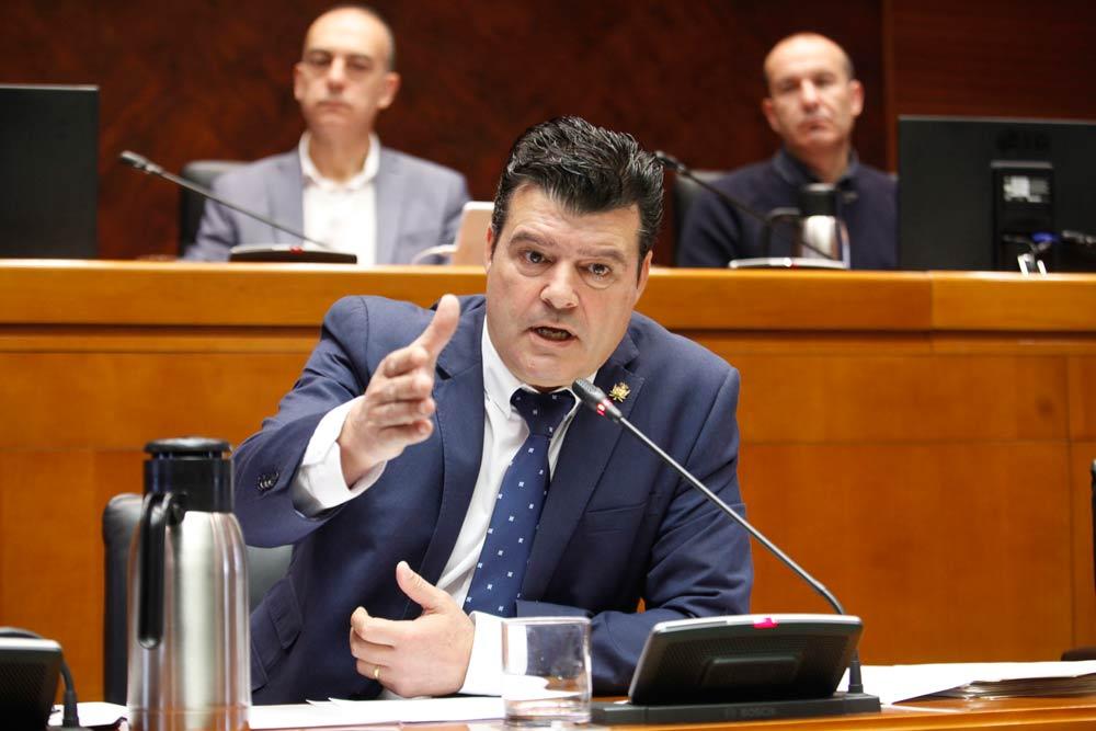 Allué ha comparecido en las Cortes para exponer ante los diputados la labor que pretende desarrollar
