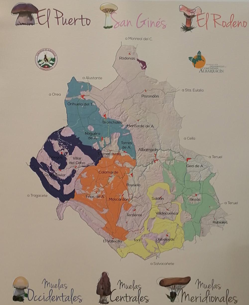 Mapa de las seis zonas diferenciadas por el tipo de seta, clima y terreno