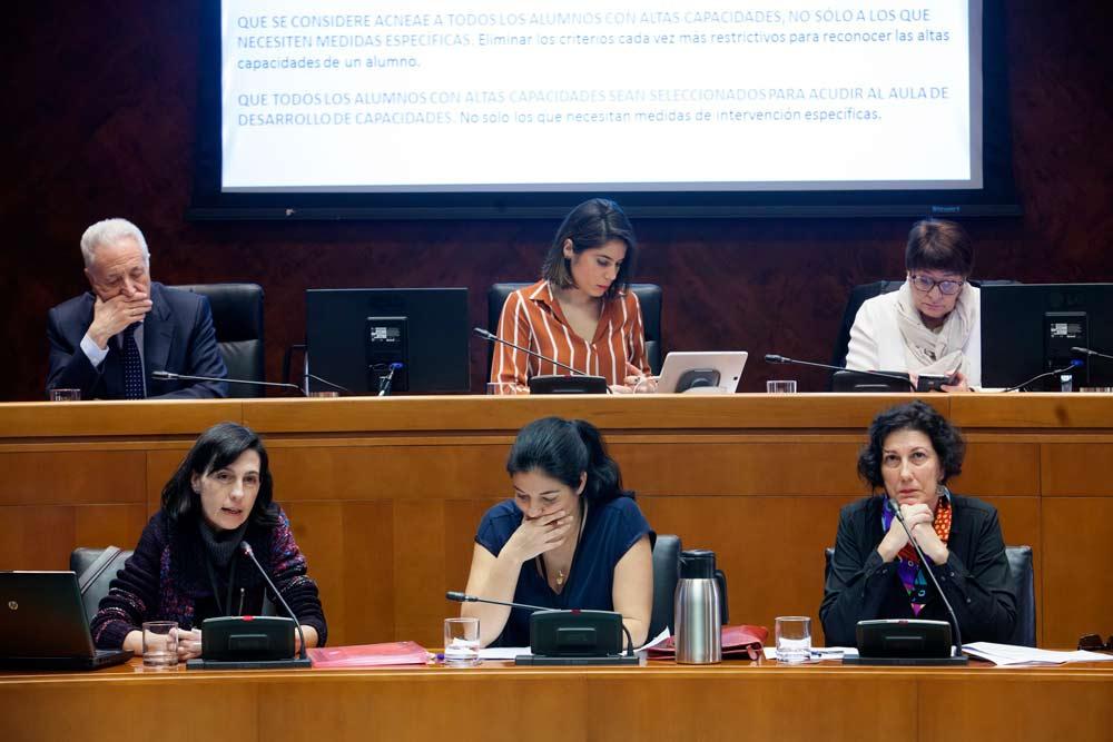 Tres madres de la asociación expusieron recientemente sus reivindicaciones en las Cortes