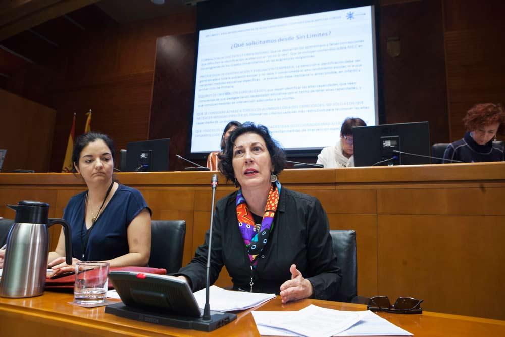 Las familias consideran que la Administración aragonesa debería volcarse más con sus hijos